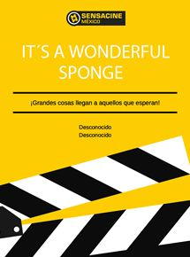 It's A Wonderful Sponge