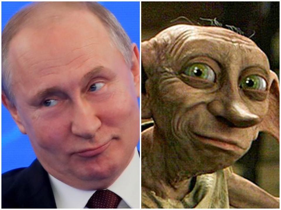 Dobby, el elfo ruso
